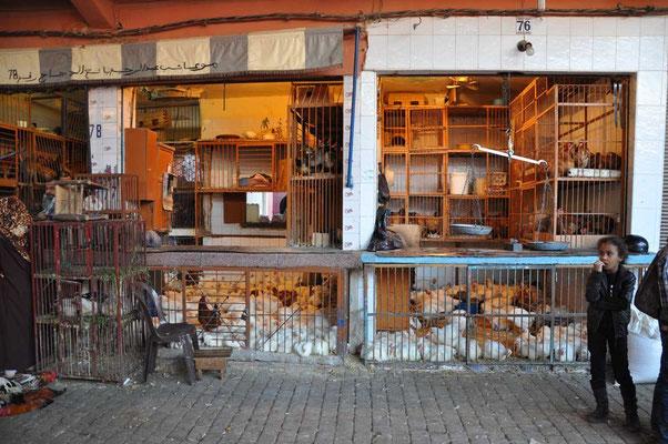 Kippenmarkt in de souk