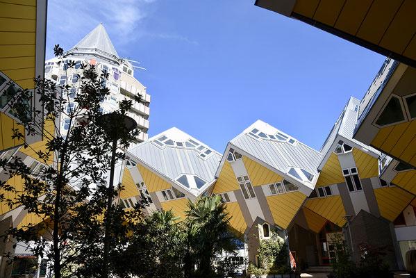 De bekende kubuswoningen van Rotterdam