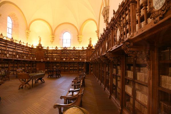 De eeuwenoude bibliotheek die je enkel kan bezichtigen achter glas