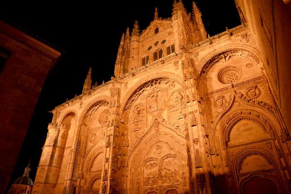De westingang van de kathedraal 'Nueve' 's avonds
