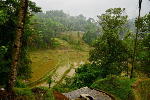 De vallei die naar Kampung Naga voert