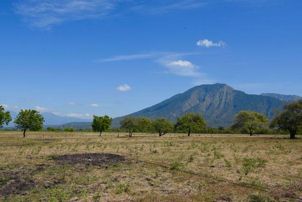 Baluran-vulkaan vanop de Bekol savanne