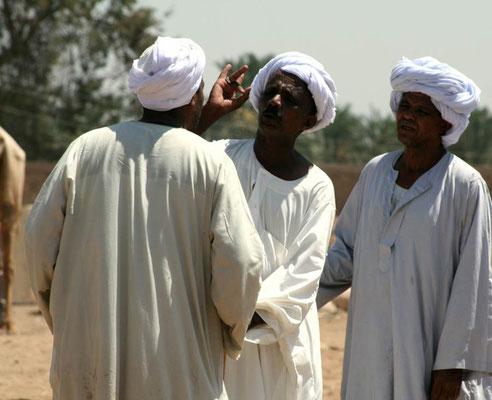Kamelenmarkt van Daraw