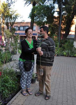 Aankoop van een peperboom. Deze werd op de school in Tighfert geplant.