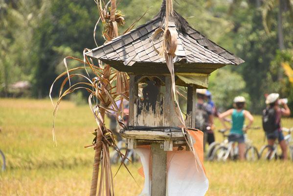 Offerplaats te midden de rijstvelden waar men offert voor een goede rijstoogst en bescherming van de velden