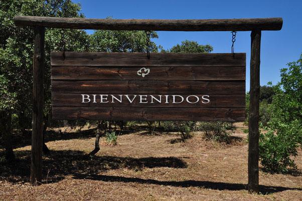 Toegang tot het Nationale Park in Pueblo Nuevo del Bullaque (Casa de Palillos)