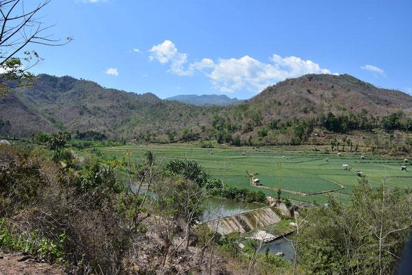 Platteland van Sumbawa