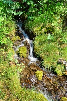 fond de sources d'eau