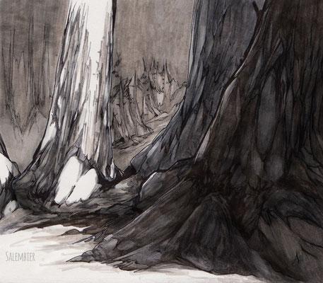 salembier-francois-illustrateur-auteur-de-bd