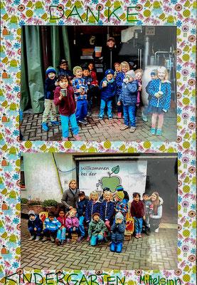 Kindergarten Mittelsinn 2016