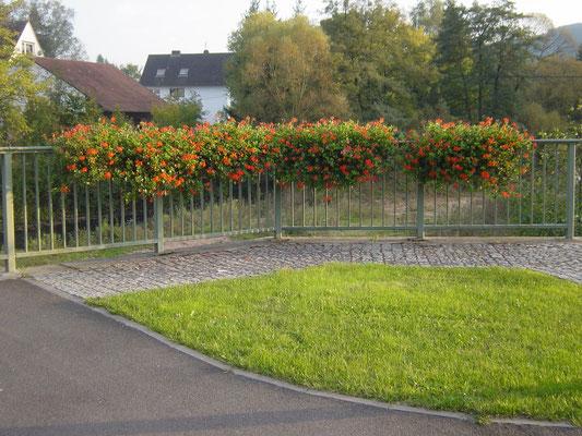 Blumenschmuck auf öffentlichen Flächen