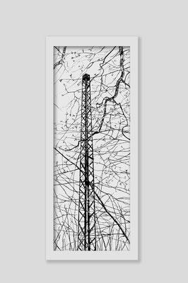 Martina Lückener  Linien 8  2014 80x30cm Zeichnung