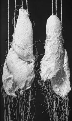 Die Lunge der Welt, Detail / Foto: Klaus Pfeiffer