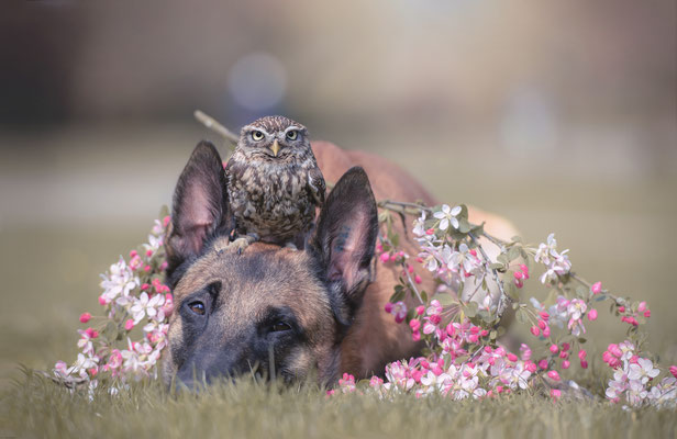 Freundschaft 10