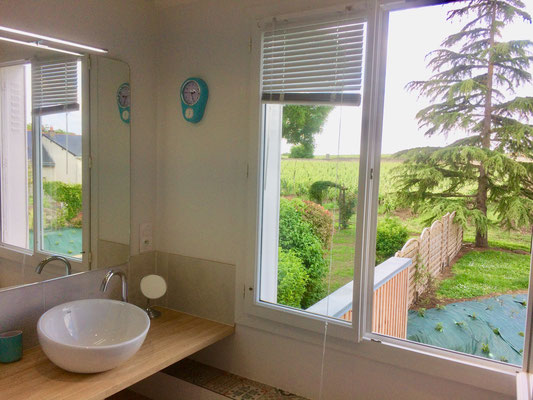 Salle de bain 1 complète avec toilette séparée