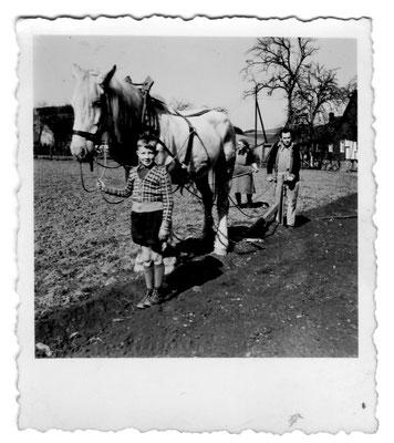 Bild Thorsten Conze:  Altenilpe 50er Jahre,  Fam. Conze pflügt