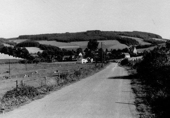 Bild Thorsten Conze: Altenilpe 1958 von Nierentrop aus Blick auf Schützenhalle und alte Schule