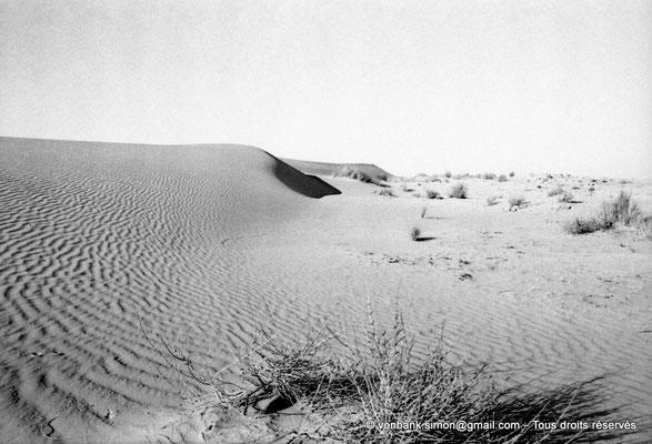 [NB099-1978-06] Désert - Dunes du grand erg oriental