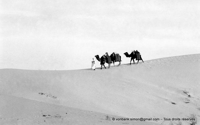 [NB088-1978-05] Touggourt : Caravane dans le désert
