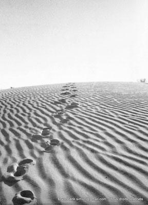 [NB091-1978-38] El Oued