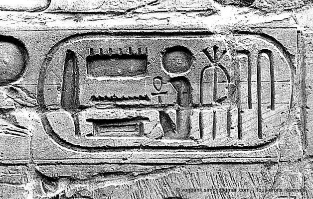 [NB079-1973-19] Louxor - Temple d'Amon-Rê : Cartouche pharaonique (titulature de Ramsès II)