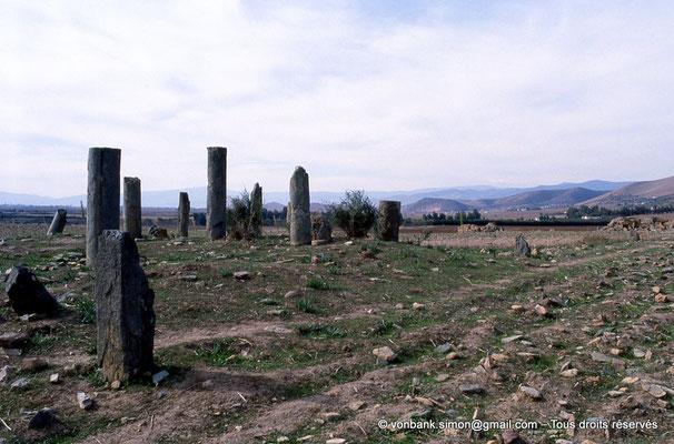 [006-1983-03] Sidi Slama (Henchir Bordj Hellal) : Colonnes en marbre vert dans un champ