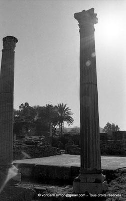 [NB028-1978-08] Annaba (Hippo Regius) : Quartier des villae du front de mer - Colonnes du seuil de la pièce de la mosaïque d'Amphitrite