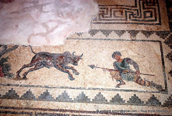 [NU900-2012-068] Paphos (Nea Paphos) : Villa de Dionysos - Scène de chasse - Chasseur à demi-agenouillé prêt à transpercer de sa lance un taureau [12]