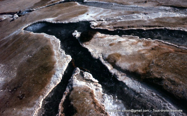 [022-1980-67] Hammam Meskoutine (Aquae Thibilitanae) : Ecoulements des eaux chaudes