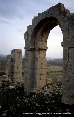 [004-1983-08] Ksour Abd el Malek (Uzappa) : Portique de la basilique