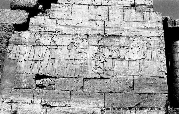 [NB086-1981-17] Ramesseum : Mur gauche de la façade Ouest de la deuxième cour