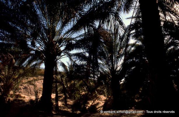 [044-1978-29] El Oued
