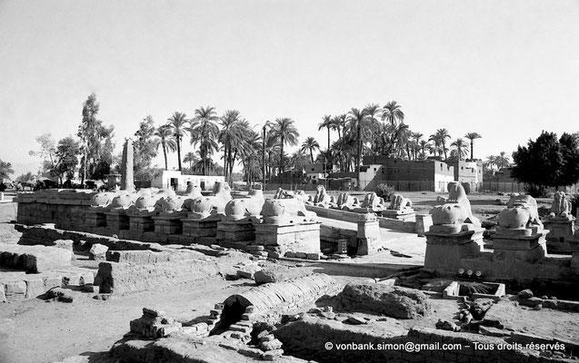 [NB077-1973-12] Karnak - Parvis du Temple : Vue partielle du dromos donnant sur le débarcadère - En arrière-plan, le petit obélisque de Séthi II