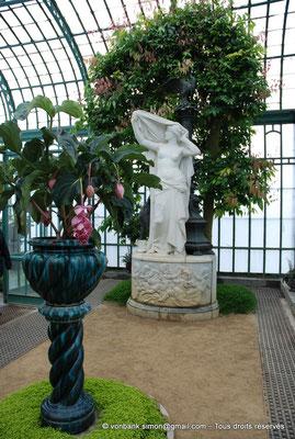 """[NU900c-2012-0193] B - Bruxelles - Laeken : Serres royales - Fleurs de Medinilla magnifica devant """"L'Aurore"""" - en arrière-plan, un cannelier"""