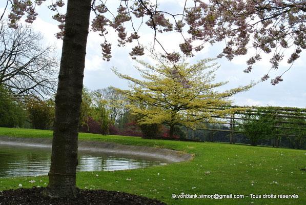 [NU900b-2012-0063] B - Bruxelles - Laeken : le Parc