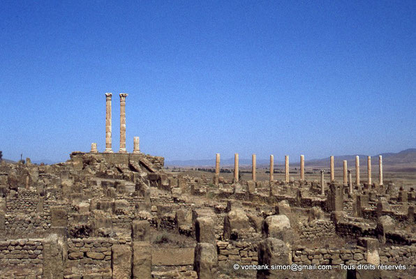 [010-1978-19] Timgad (Thamugadi) : Le Capitole