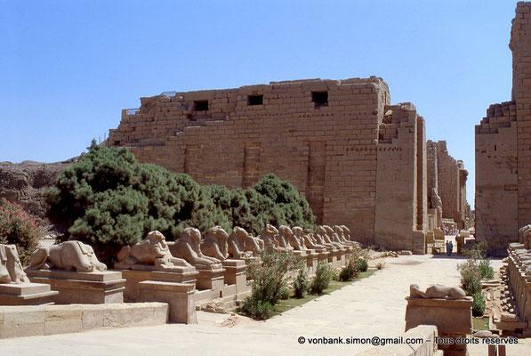 [069-1981-05] Karnak - Parvis du Temple : Dromos avec sphinx à tête de bélier - En arrière-plan, le môle Nord et la porte du premier pylône