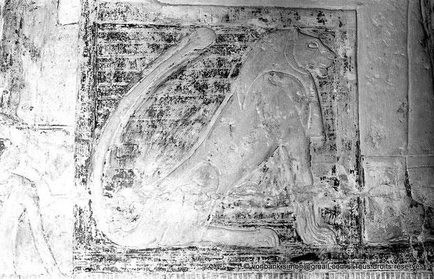 [NB080-1973-43] Saqqara - Mastaba de Watetkhethor : Watetkhethor est transportée dans une chaise à porteurs dont le côté est décoré par un lion assis (Chambre B5, mur Nord)