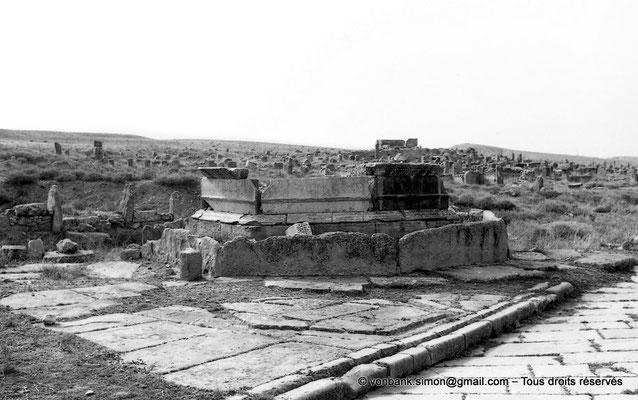 [NB010-1981-07] Timgad (Thamugadi) : Fontaine de Liberalis