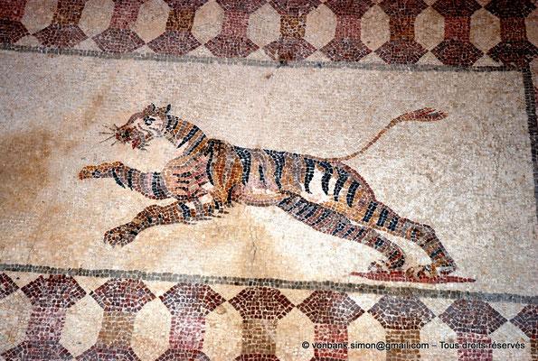[NU900-2012-062] Paphos (Nea Paphos) : Villa de Dionysos - Scène de chasse - Tigre [11]