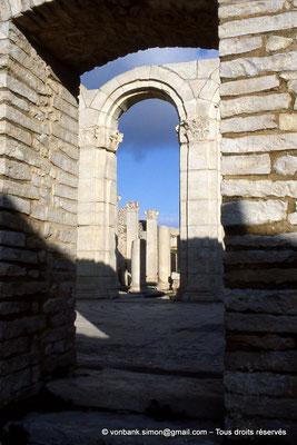[034-1983-16] Makthar (Mactaris) : Grands thermes du Sud-Est - Frigidarium et ses mosaïques - en arrière-plan, Palestre Nord-Est