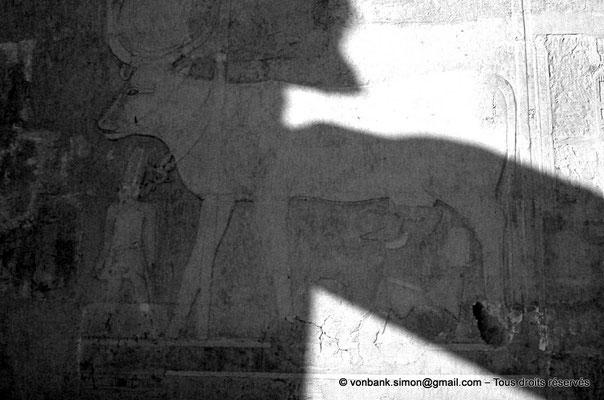 [087-1973-31] Deir el-Bahari : Temple d'Hatchepsout - La vache Hathor allaite la reine en présence du dieu Amon (chapelle d'Hathor)