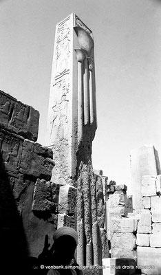 """[NB078-1973-44] Karnak - Ipet-Sout :  Le """"papyrus"""", la plante héraldique de Basse-Égypte (Thoutmôsis III)"""