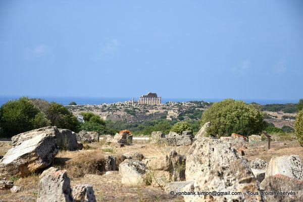 [NU906-2019-1434] Sélinonte - Temple C (face Nord) et remparts : Vue prise depuis l'arrière du temple F sur la colline orientale