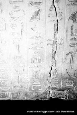 [087-1973-22] Saqqara - Ounas : Cartouche du pharaon - Textes des pyramides (vue partielle)