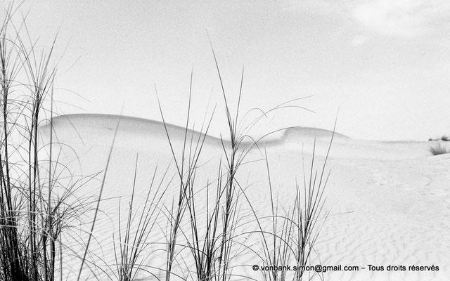 [NB005-1981-35] Désert - Dunes du grand erg oriental
