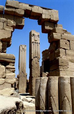[068-1981-22] Karnak - Ipet-Sout : Dans l'avant-cour du pylône VI, piliers héraldiques carrés en granit rose (Thoutmôsis III)