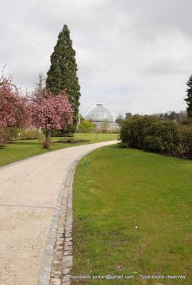 [NU900c-2012-0099] B - Bruxelles - Laeken : le Parc