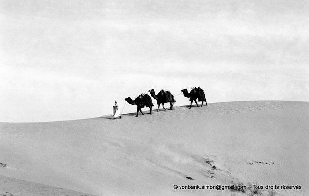 [NB088-1978-04] Touggourt : Caravane dans le désert