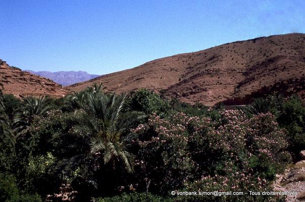 [041-1978-18] Massif de l'Aurès